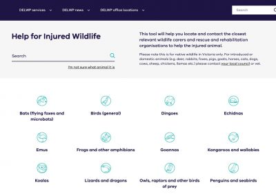 Wildlife Incidents & Emergencies